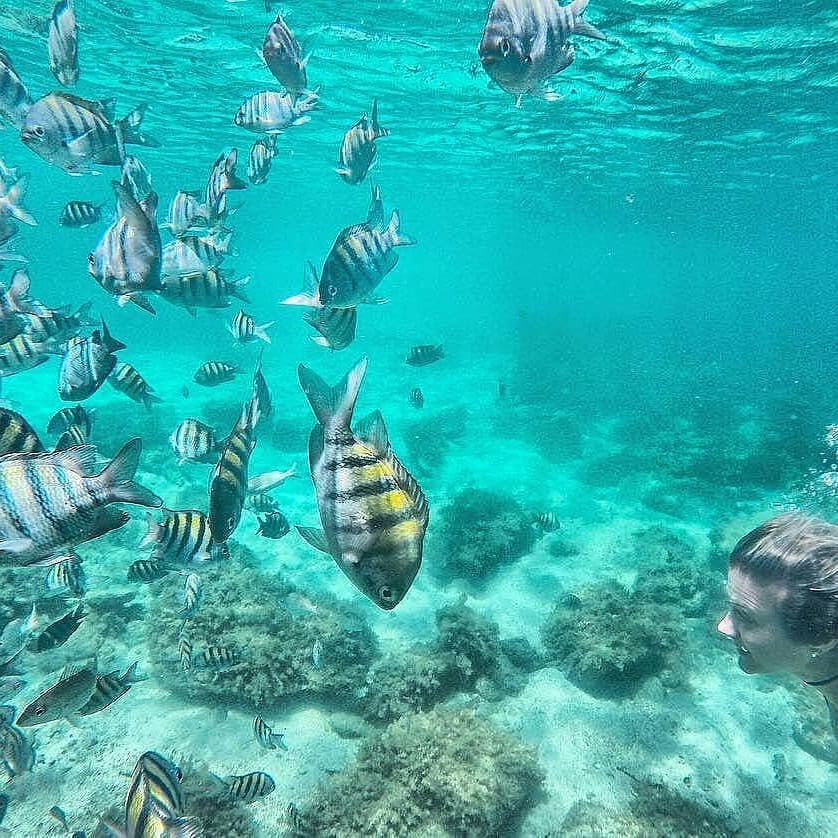 ilha grande diving tour by brazil ecotour local travel agency in brazil