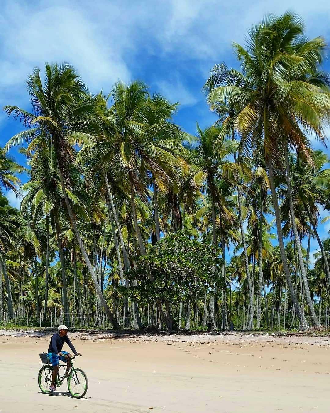 Boipeba Island Brazil