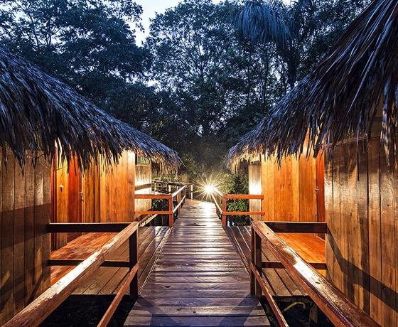 Amazon River cruise-Amazon lodge-Amazon-trips-to-brazil-amazon-tours-Amazon-river-destination-brazil-tours-trips-travel-jouney-holidays-