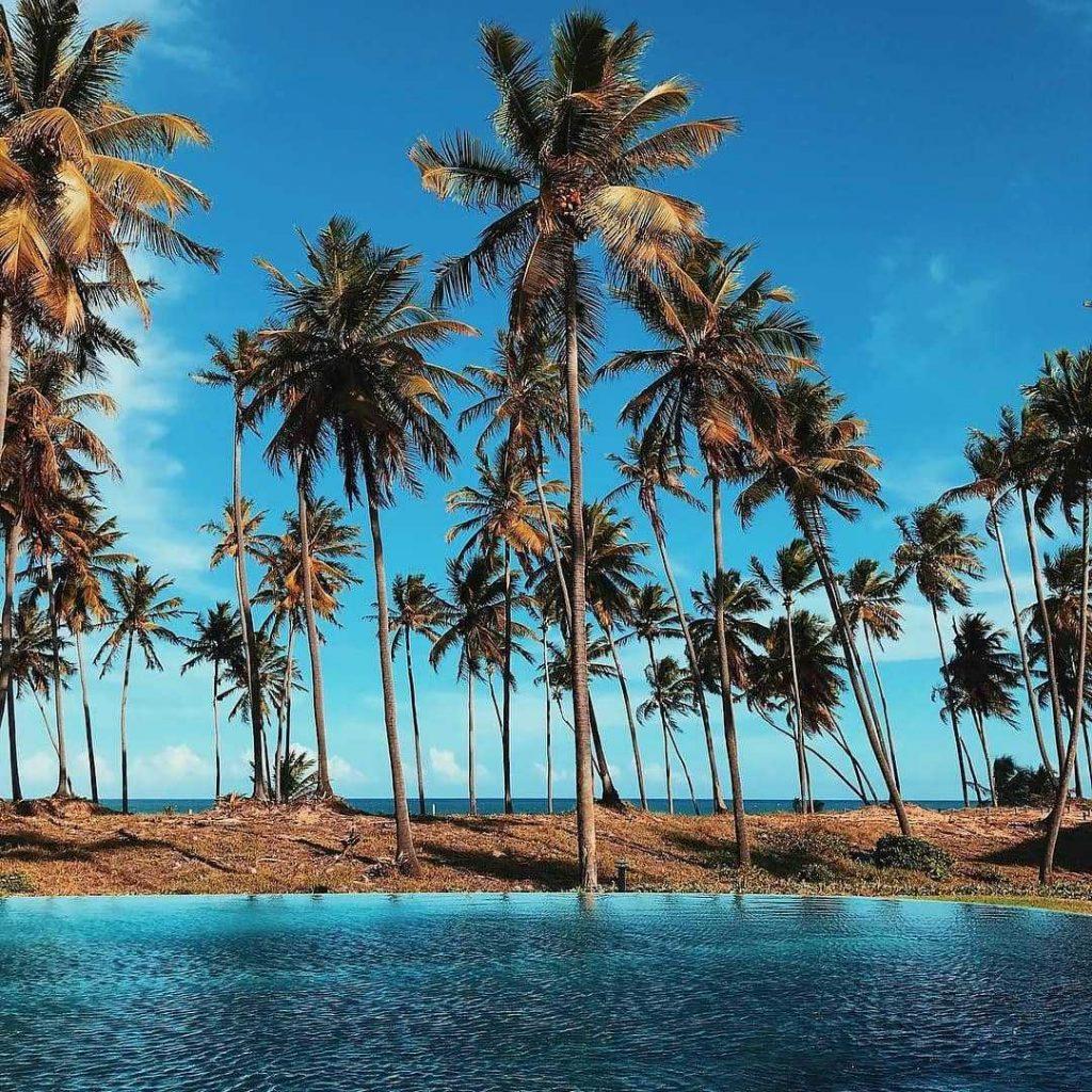 praia de forte resort beach