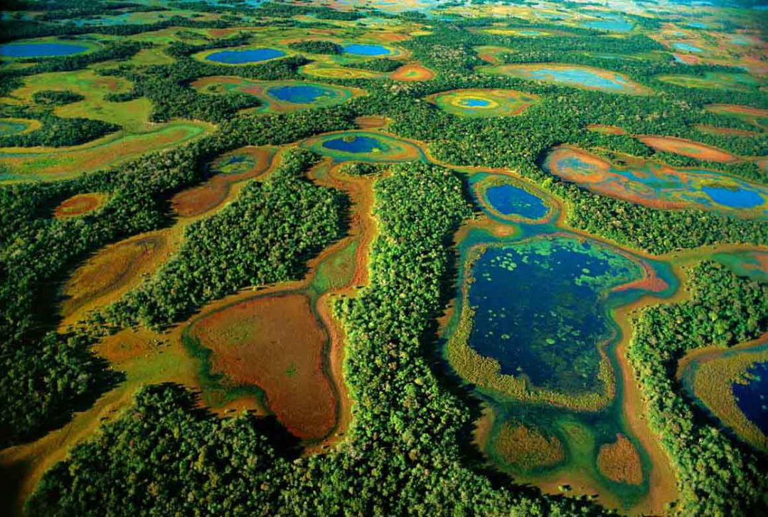 pantanal-tours-safari-brazil-journey-safaries-expeditions-brazilecotour.com