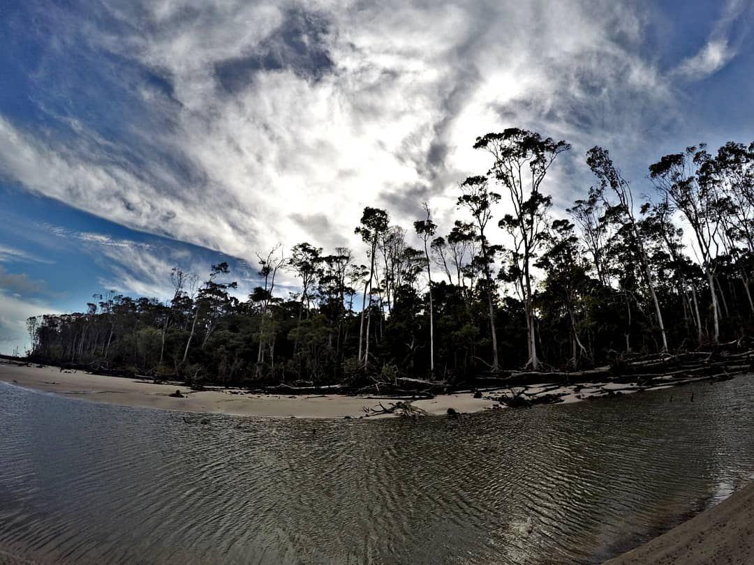 marajo island brazil amazonie