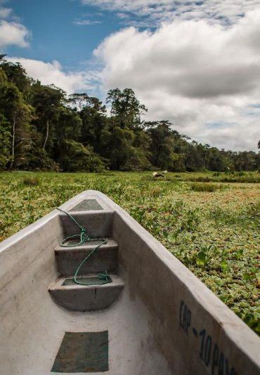 amazonrainforest boat tour