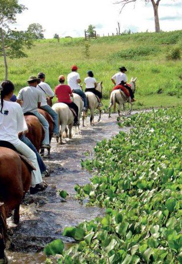 excursion-cheval-pantanal-bonito-cuiaba-nature-voyage-agence-de-voyage-francophone-tours-sejours-prix-pas-cher
